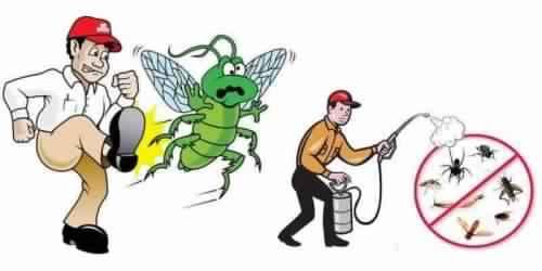 شركة مكافحة حشرات بلبن-0539405627