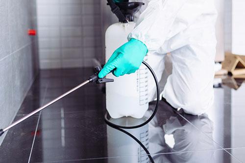 تنظيف المنزل بعد رش المبيدات