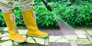 شركة رش مبيدات بنجران 0538156829